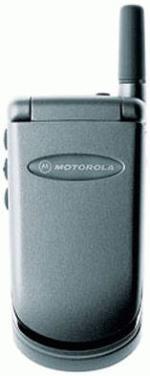 Motorola V15
