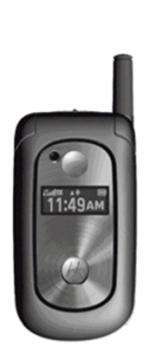 Motorola V323