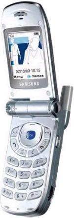 Samsung SGH-Z100