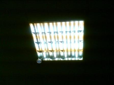 ламп дневного света с перегоревшими нитями - Всемирная схемотехника.