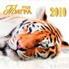 С Новым годом, дорогие читатели!!!