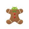 Motorola станет первой, кто выпустит смартфон на базе Android Gingerbread?
