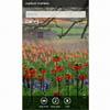 Сегодня состоится анонс 9 смартфонов с Windows Phone Mango