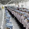 В Apple рассчитывают на рекордный спрос на iPhone 7