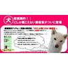 Японцы предлагают рингтоны для собак