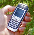 SonyEricsson J300i. Обзор сотового телефона